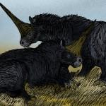 Restitution d'Elasmotherium Sibiricum (par Apokryltaros)